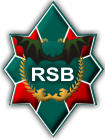 RSB-Group - military consulting company